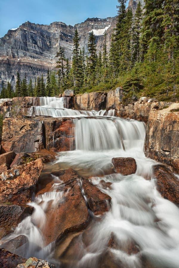 Gigantyczny Krok siklawa, Banff park narodowy, Alberta, Kanada obraz stock