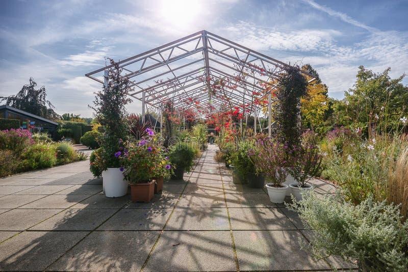 Gigantyczny metalu gazebo pełno piękne rośliny i kwiaty w au zdjęcie stock