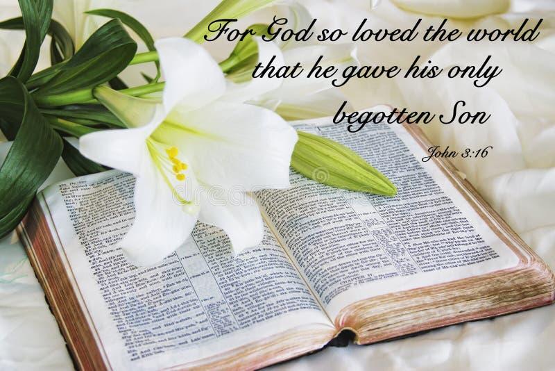 Giglio che mette su una bibbia antica sulla mattina di Pasqua immagini stock libere da diritti