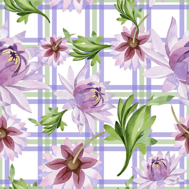 Giglio di acqua dentellare Fiore botanico floreale Modello selvaggio del wildflower della foglia della molla royalty illustrazione gratis