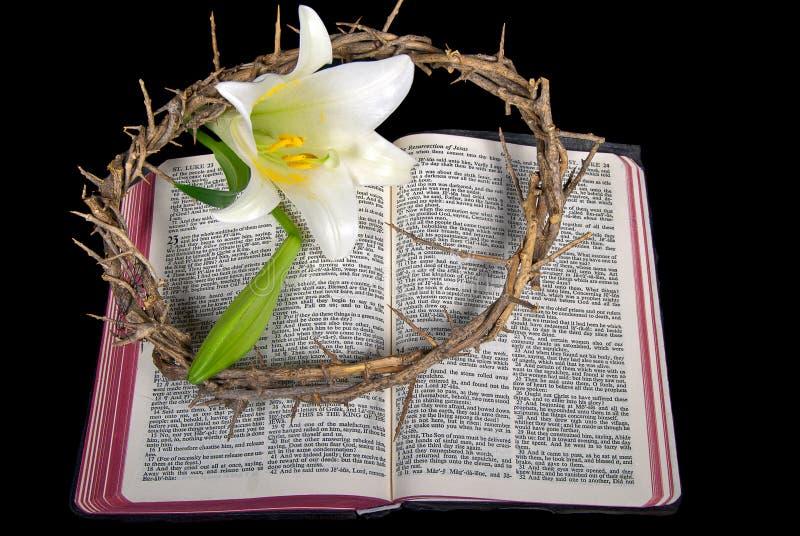 Giglio di pasqua con la corona delle spine sulla bibbia immagini stock libere da diritti