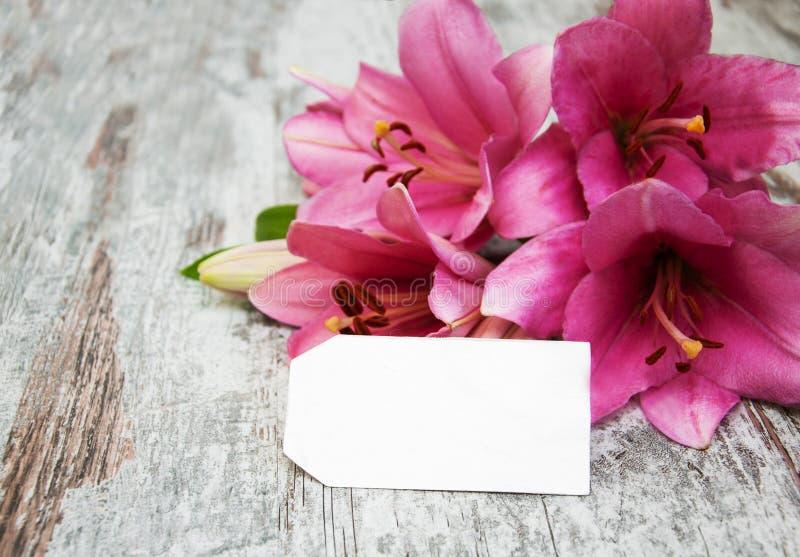 Giglio rosa con l'etichetta fotografia stock