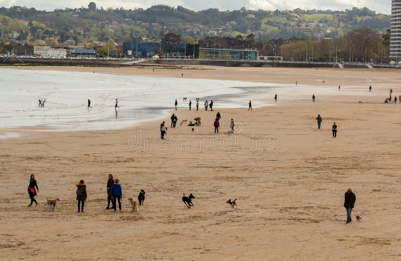 Gijon, Asturias, Spain, April 09, 2019 People enjoy the day at the beach, with their pets royalty free stock photography