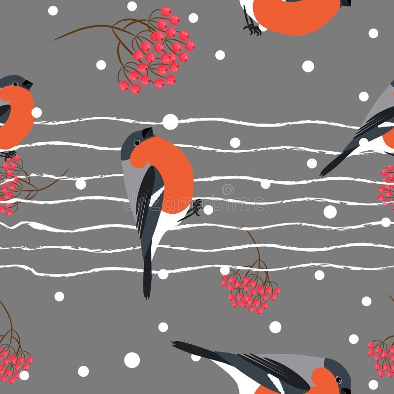 Gila i berberry gałęziasty bezszwowy wzór Wektorowy tło ilustracji