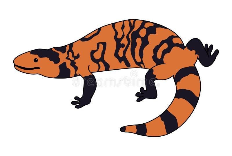 Gila Monster illustration vector.Lizard vector. Gila Monster illustration vector isolated on white background royalty free illustration