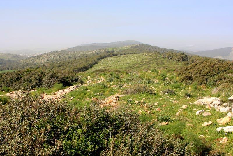 Gilboa,以色列 库存图片