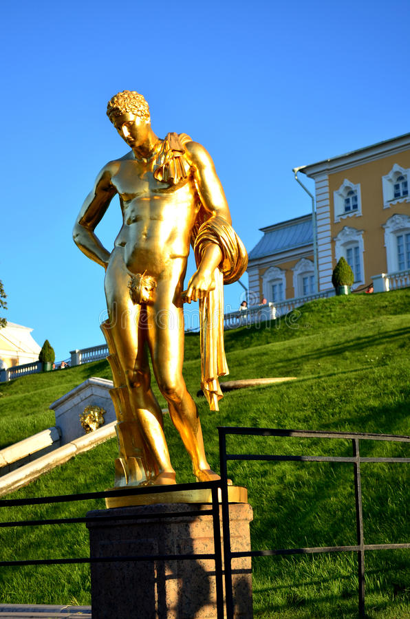 Gilded statue of a Nude male in Peterhof. Saint-Petersburg. Russ. Gilded statue of a Nude male in Peterhof. Saint-Petersburg. The journey to Russia. Part of the stock image