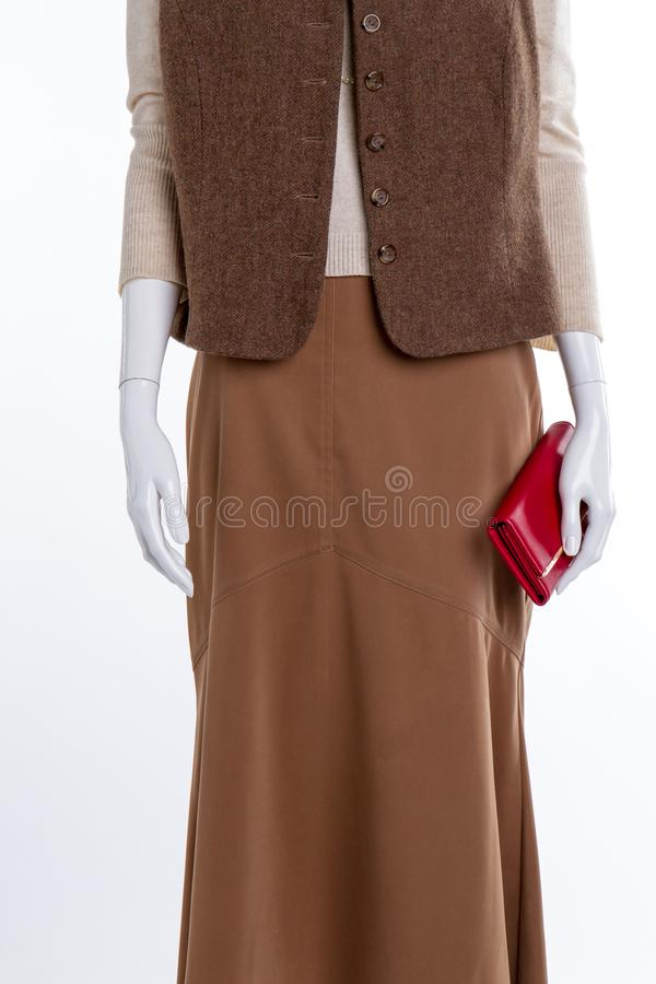 Gilet, jupe et portefeuille femelles photo stock