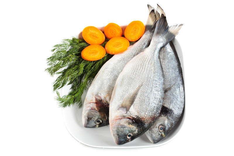 Download Gilt head bream stock image. Image of isolated, condiment - 22229421