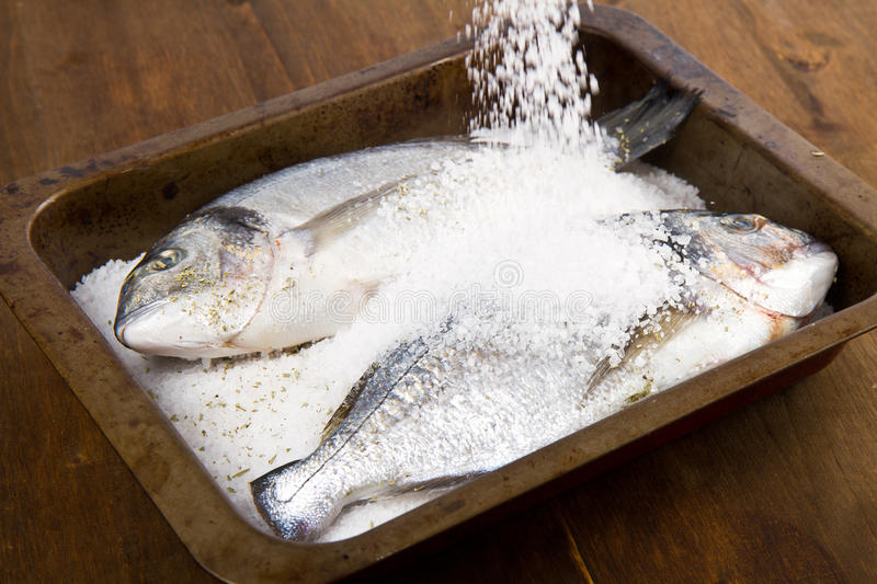 Gilt head sea bream baked. In sea salt stock images