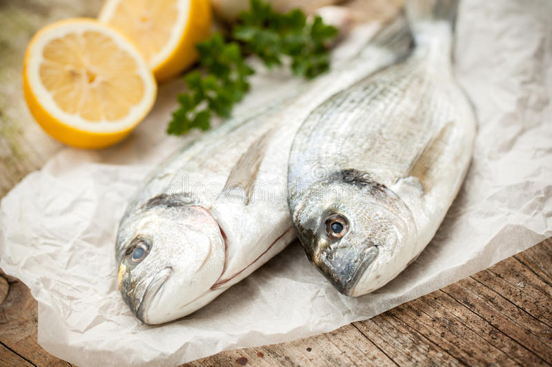 Gilt-head sea bream fish. Fresh gilt-head sea bream fish with ingredients royalty free stock photos