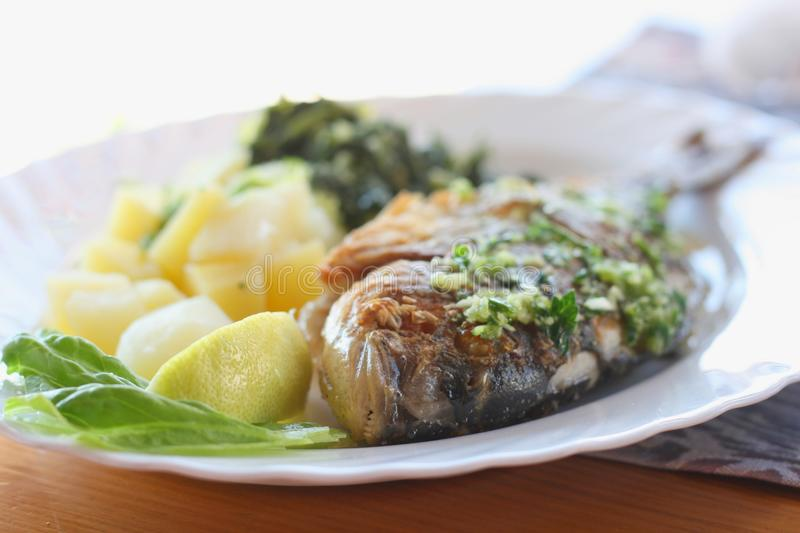 Gilt-head sea bream. (Sparus aurata) grilled, served with tomato and chard royalty free stock images