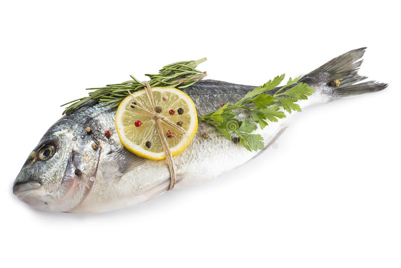 Gilt-huvud braxenfisk med isolerade kryddor arkivfoto