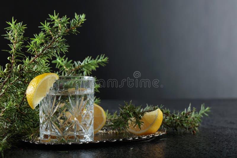 Gim, tônico com fatias de limão e um ramo do zimbro imagem de stock royalty free