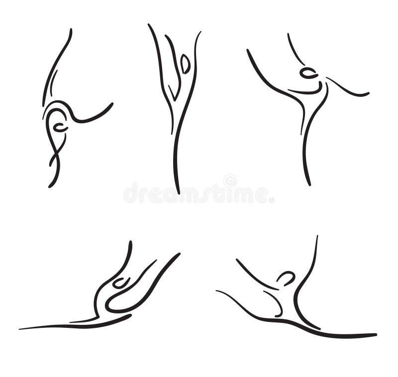 Gimnasia rítmica. ilustración del vector