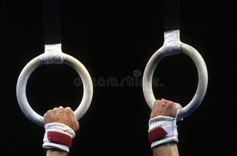 gimnastyczni pierścieni zdjęcie royalty free