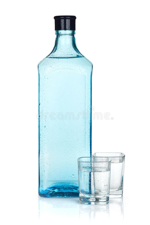 Gin bottle and two shots stock photography