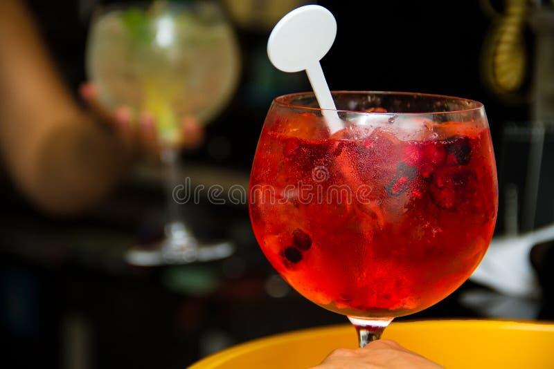 Gin Cool Beverage Red tonique images libres de droits