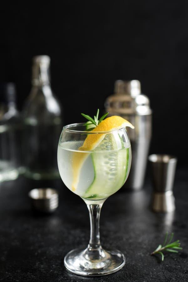 Gin Fizz Cocktail lizenzfreies stockfoto
