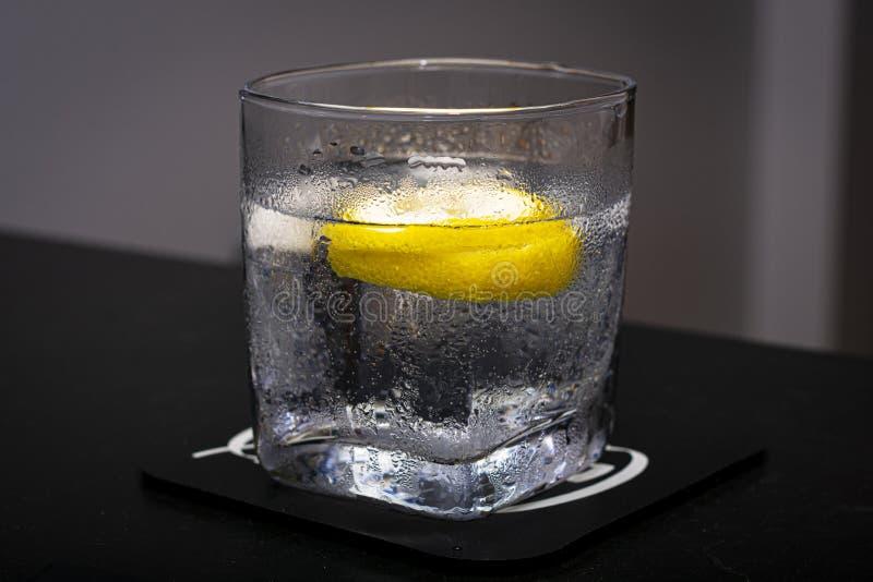 Gin och tonic royaltyfri bild