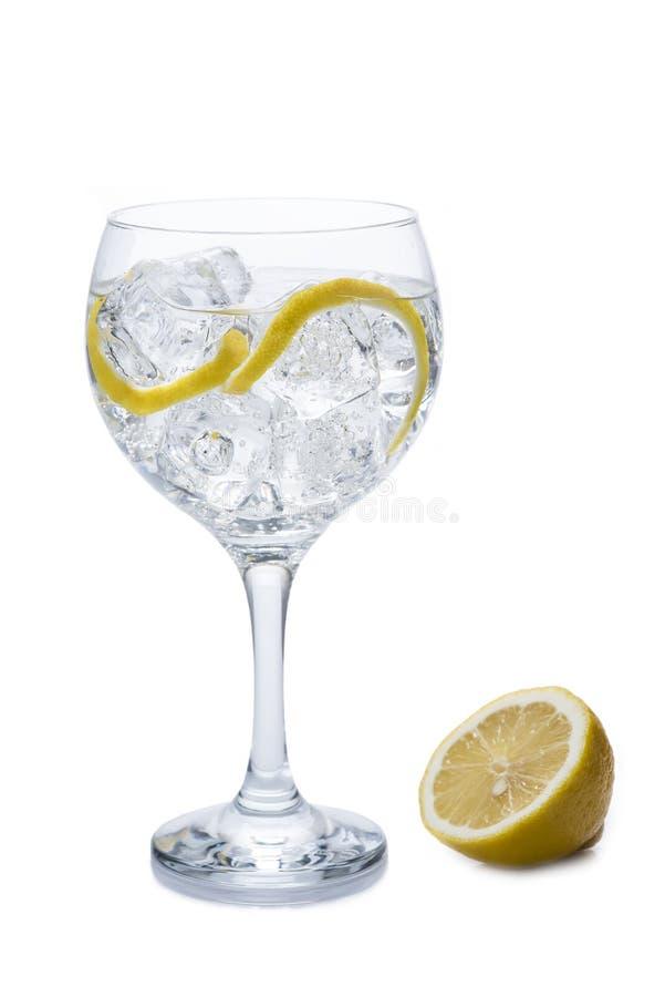 Gin och uppiggningsmedel fotografering för bildbyråer
