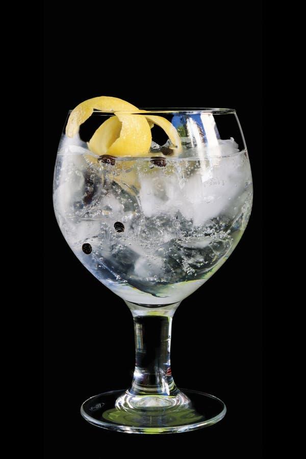 Gin och uppiggningsmedel i ett ballongexponeringsglas som isoleras på svart bakgrund royaltyfri fotografi