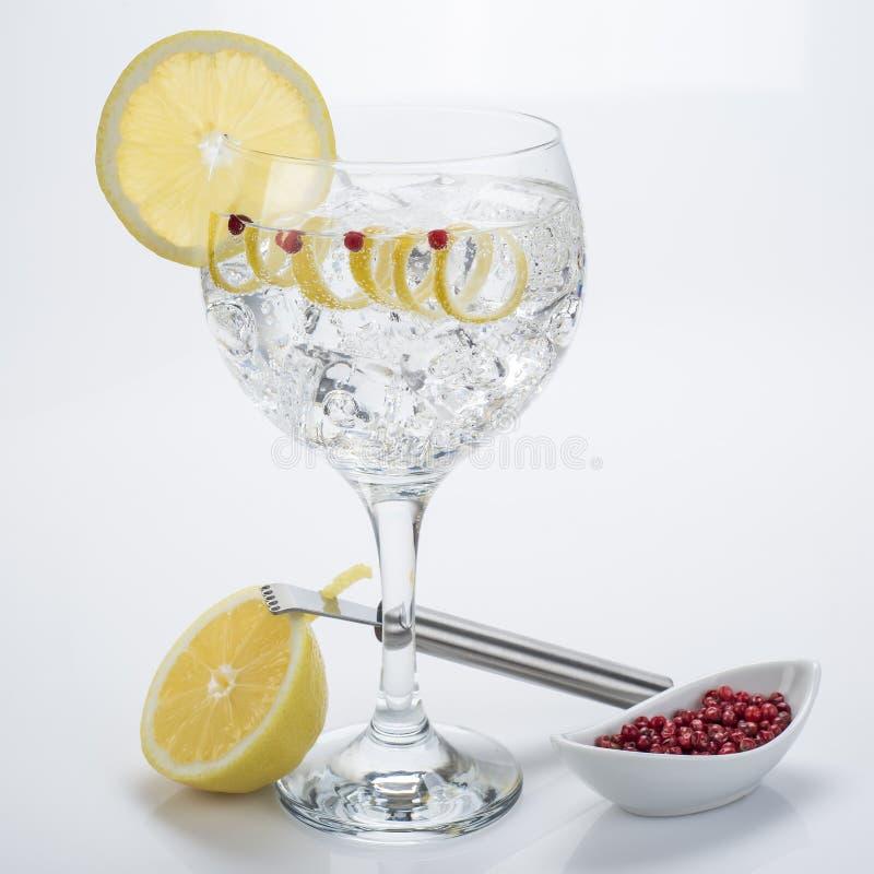 Gin och uppiggningsmedel med rosa färger pepprar och citronvridningen royaltyfria foton