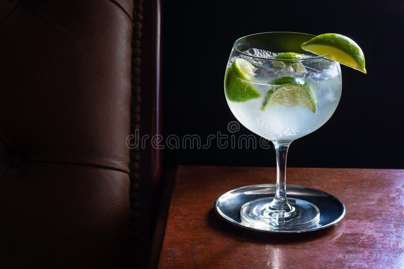Gin- och uppiggningsmedelcoctail med limefrukter i m?rk st?ng arkivbilder