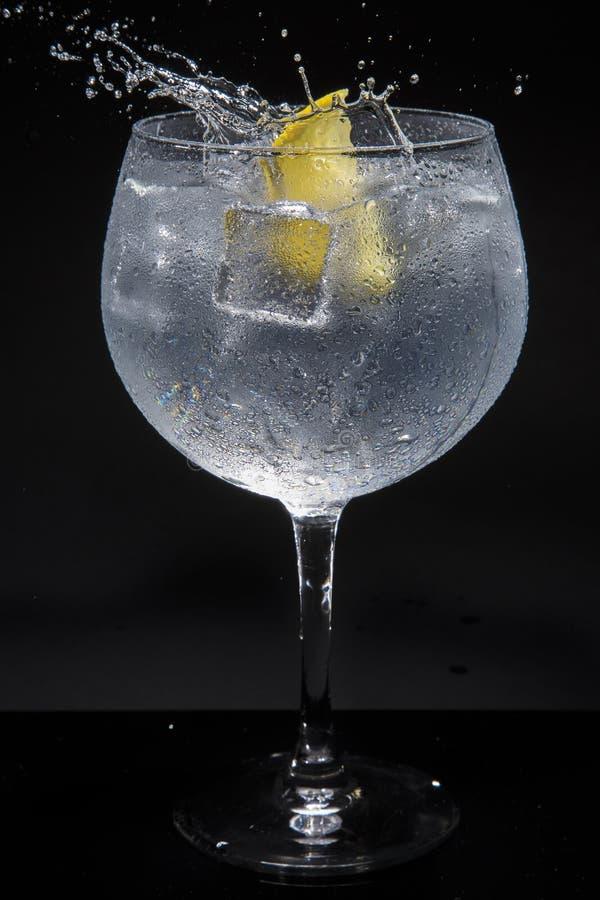 Gin tonic arkivfoton