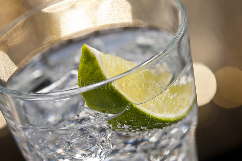 Download Gin Tonic Cocktail stock photo. Image of food, cool, concept - 22064846