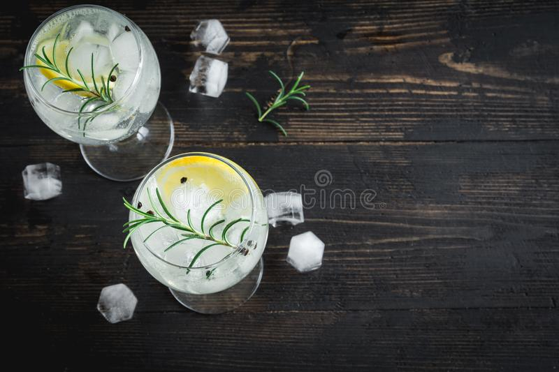 Gin and tonic cocktail royalty free stock images
