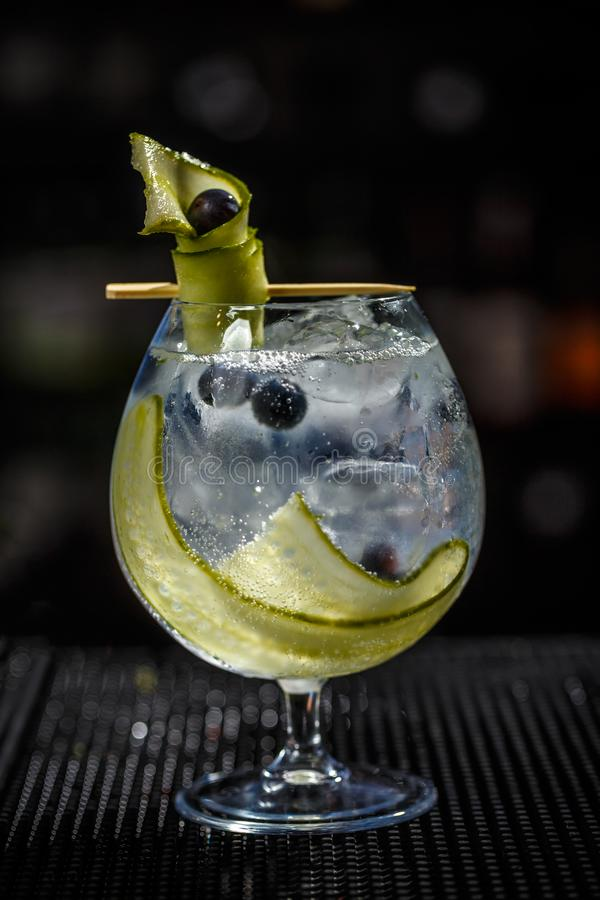 Gin tonic cocktail stock photography