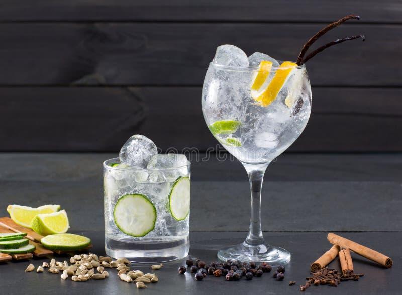 Gin tonic cocktail with lima cucumber vanilla cloves cardamom stock photos