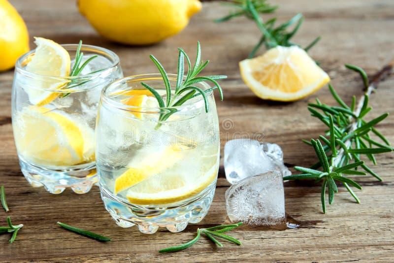 Gin Tonic Cocktail mit Zitrone, Rosmarin stockfoto