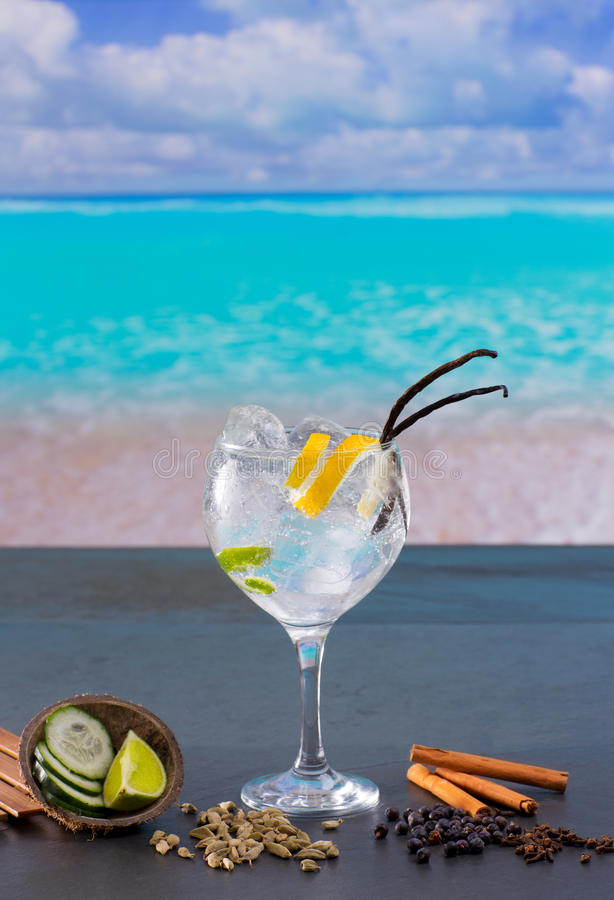 Gin Tonic Cocktail With Spices In  Tropical Caribbean Beach Stock Images