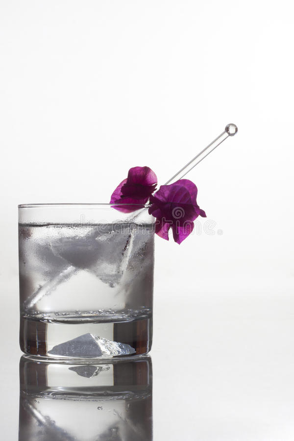 Gin Tonic Stock Images