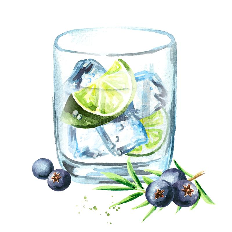 Gin tonik with ice cubes, lime slice and juniper berries. Watercolor hand drawn illustration, isolated on white background. Gin tonik with ice cubes, lime slice royalty free illustration