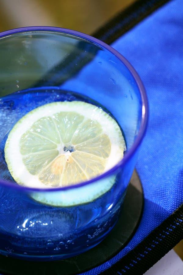 Gin und Stärkungsmittel lizenzfreie stockfotografie