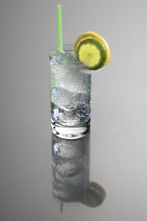 Gin und Stärkungsmittel-Cocktail lizenzfreie stockbilder