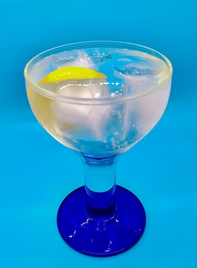 Gin und Stärkungsmittel mit einer Scheibe der Zitrone lizenzfreies stockfoto