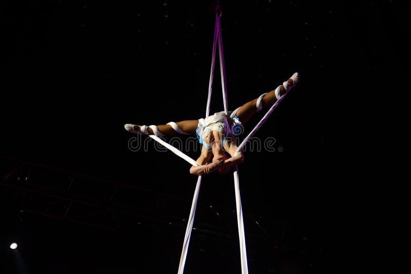 Ginasta aérea, artista do circo, desempenho acrobático imagem de stock royalty free
