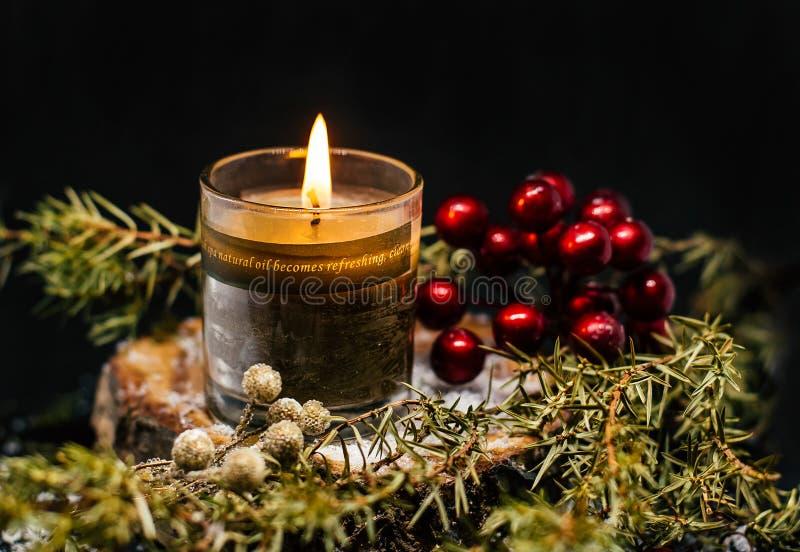 Ginepro della decorazione della candela di Natale su fondo nero fotografia stock