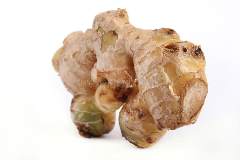 Download Ginger stock image. Image of chinese, rootm, spice, freshness - 18832569