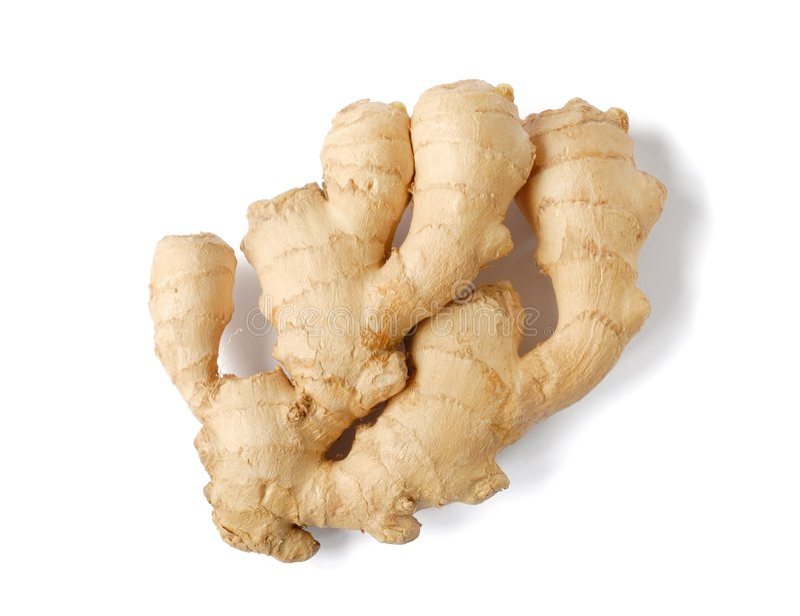 Ginger royalty free stock image