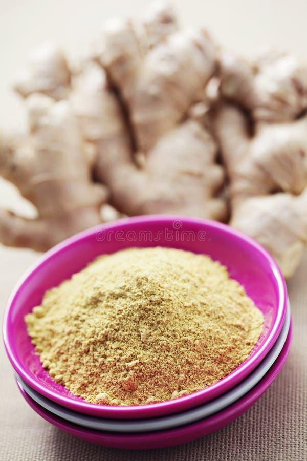 Download Ginger stock image. Image of plant, spice, ginger, vegetable - 25513979