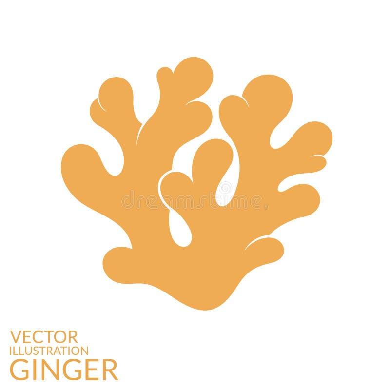 ginger ilustração do vetor