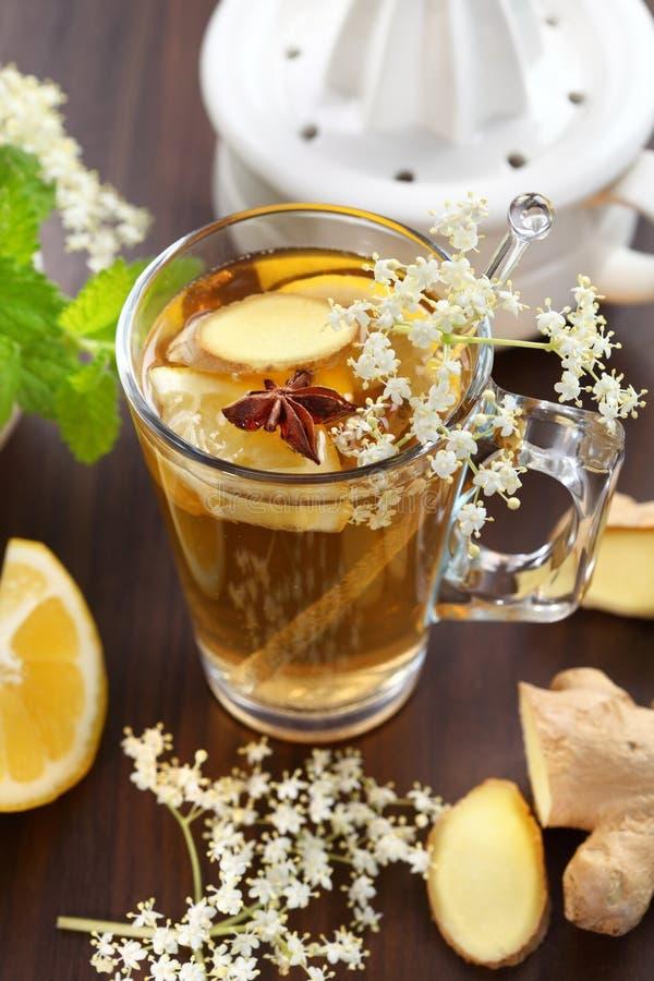 Download Ginger ale stock image. Image of fresh, liquid, fruit - 25326129