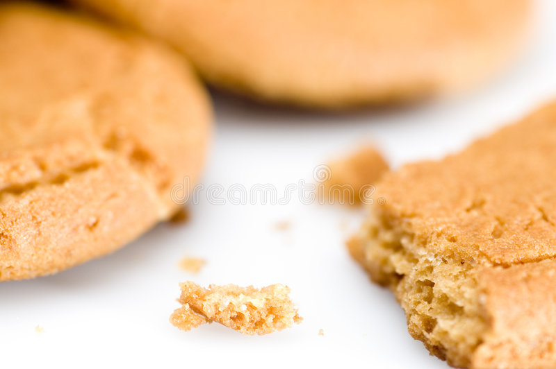 Download Ginger biscuits stock photo. Image of background, nutrition - 1194332