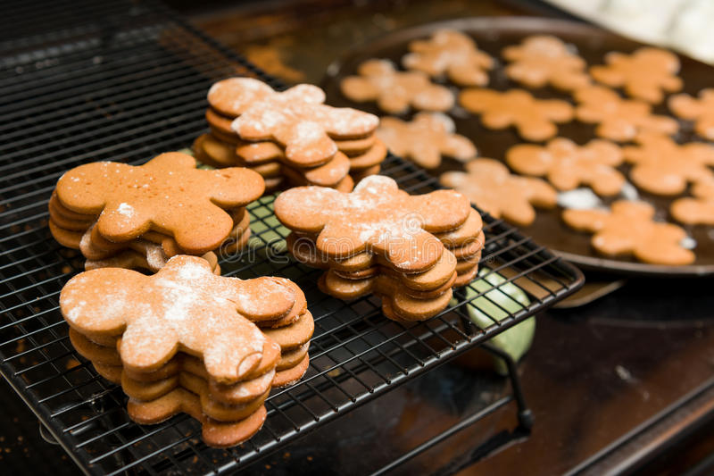 Ginger Bread Cookies photo libre de droits