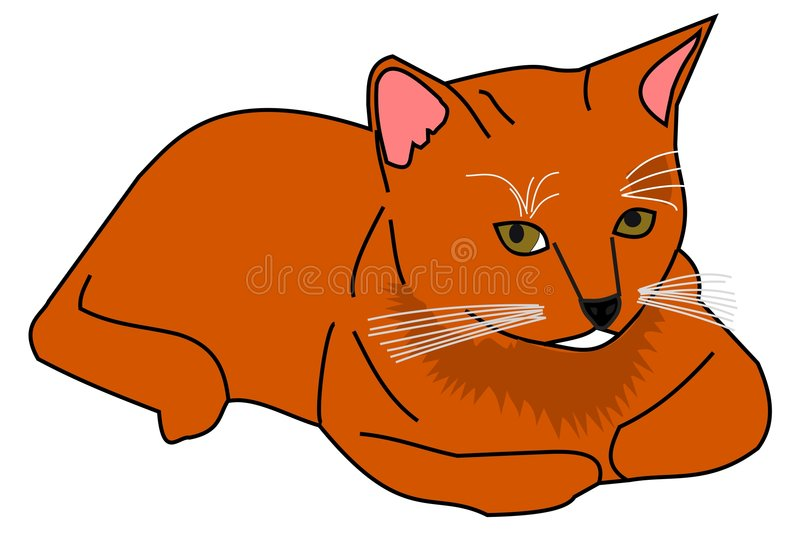 Download Ginger cat stock vector. Image of illustration, nice, isolated - 7215467